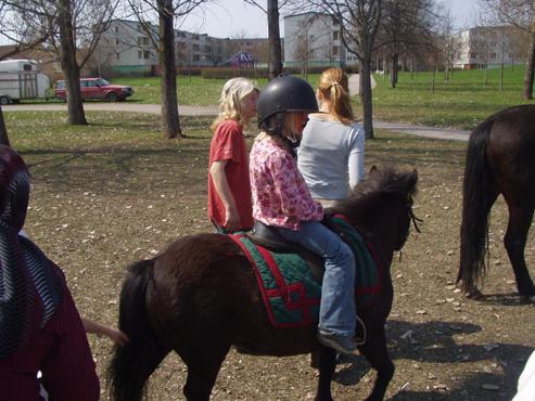 Häst ridning